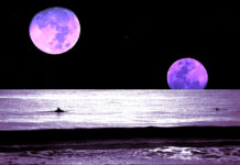 2020 Will Give Us 13 Full Moons (2 Supermoons & 1 Blue Moon)