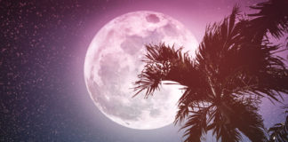 This Is How The Sagittarius Full Moon Will Affect Your Zodiac Sign