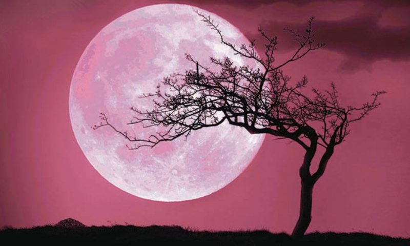 blood moon meaning for scorpio - photo #37
