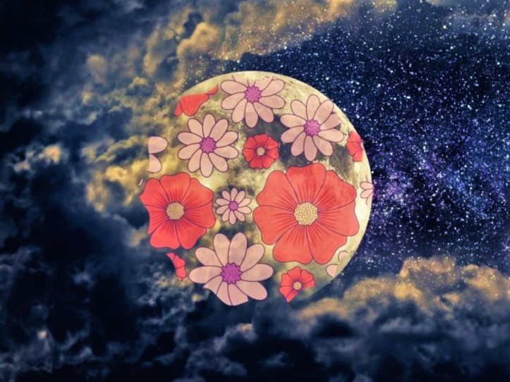 Full Flower Moon Meaning And Ritual Time For Gratitude