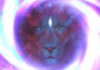 Activation Of The Powerful 8/8 Lionsgate Portal