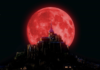 Super Blood Moon Horoscope: The Universe Is Sending Good Signs