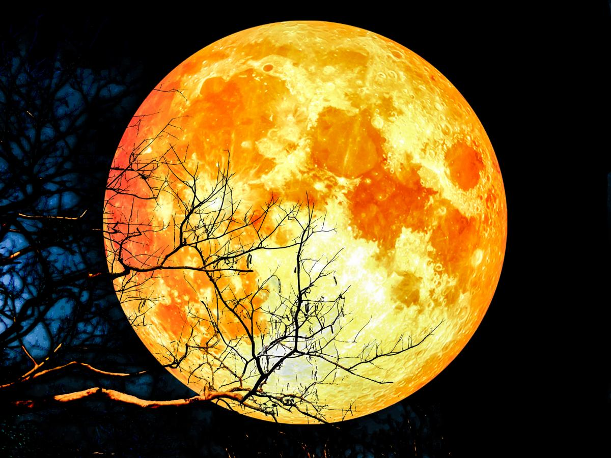 blood moon meaning pisces - photo #15