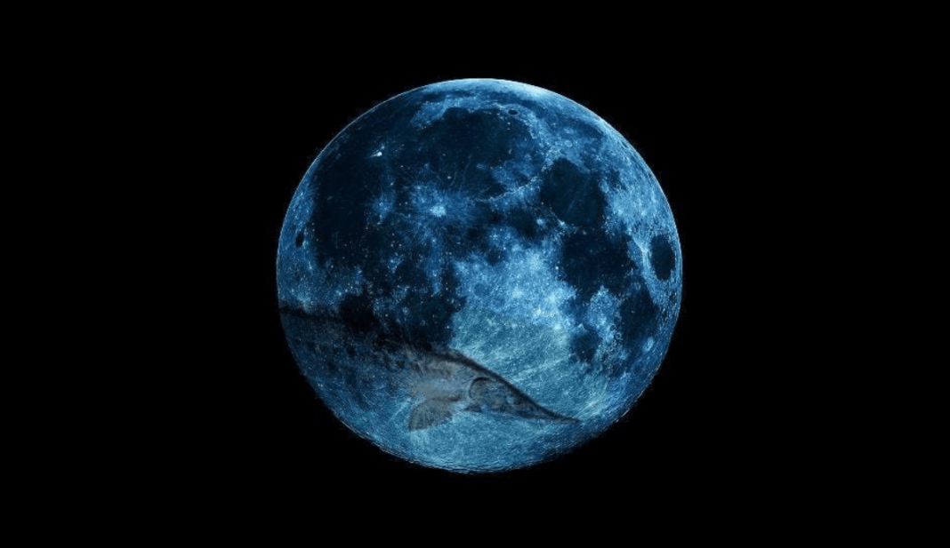 Sturgeon Full Moon Rising In Pisces Today, August 26th: Emotional Times