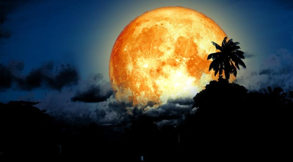 full moon august - photo #31