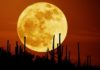 The Full Harvest Moon On Friday 13th Is Making Us Come Face To Face With Our Fears