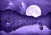 Taurus New Moon & Scorpio Full Moon Taking Place This May: Stable And Passionate Energies