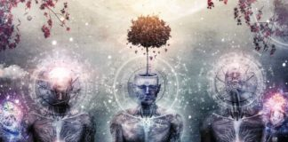 Coincidence vs. Synchronicity - Signs You Shouldn't Ignore