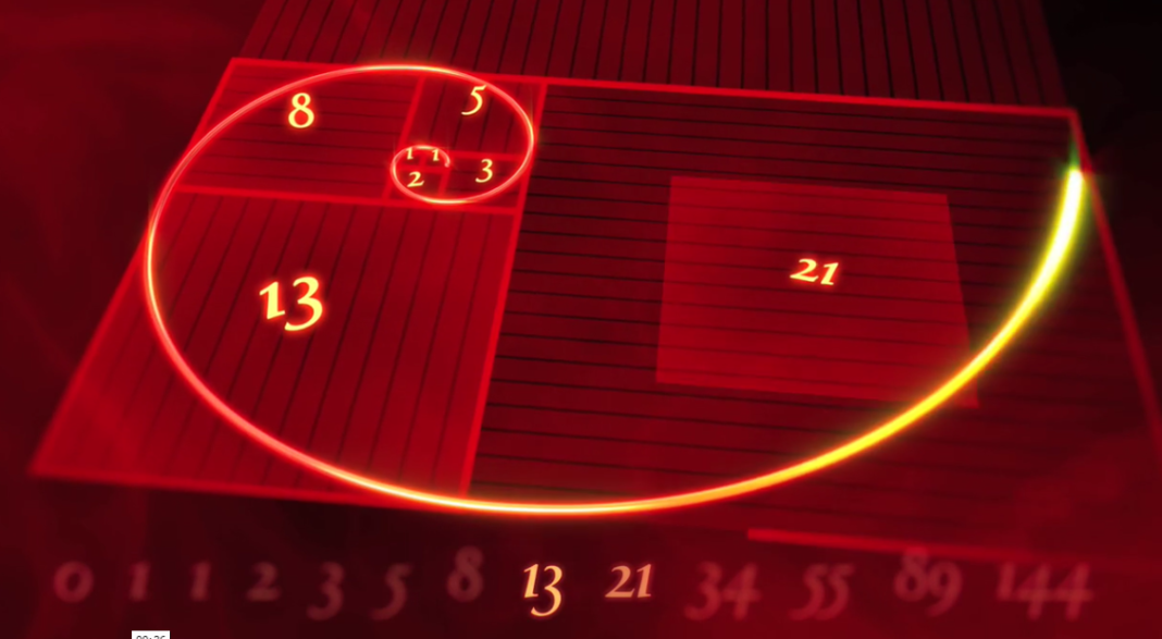 Nature By Numbers: Amazing Animated Fibonacci Sequence Will Leave You Speechless