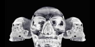 The Enigma Of The Crystal Skulls