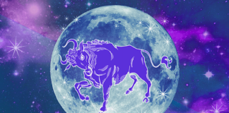 Taurus Full Moon Rising October 24th: Love May Catch You Off Guard