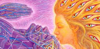 Establishing A Telepathic Bond Through Soul Connection