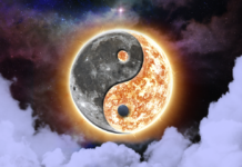 What Is The Law Of Polarity & How To Use It