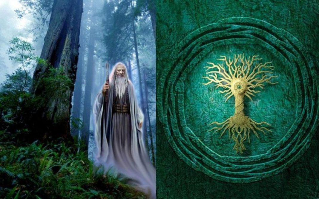 The Symbolic Meaning Behind The Celtic Tree Of Life