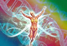 Activation Of The Light Body & Ascension