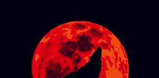 Full Wolf Moon/ Lunar Eclipse, January 10th: Not Such A Cheerful Start Of The Year
