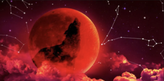 This Is How The January Blood Moon Will Affect The Zodiac Signs