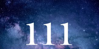 The Special Numerology Of 11th January Brings Spiritual Transformation Within Us