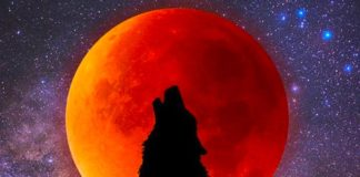 Tomorrow's Full Moon/Lunar Eclipse Will Have A Massive Effect On The Zodiac Signs