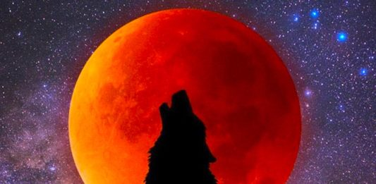 Wolf Moon Horoscope Is Here And It's A Celebratory Message From The Cosmos