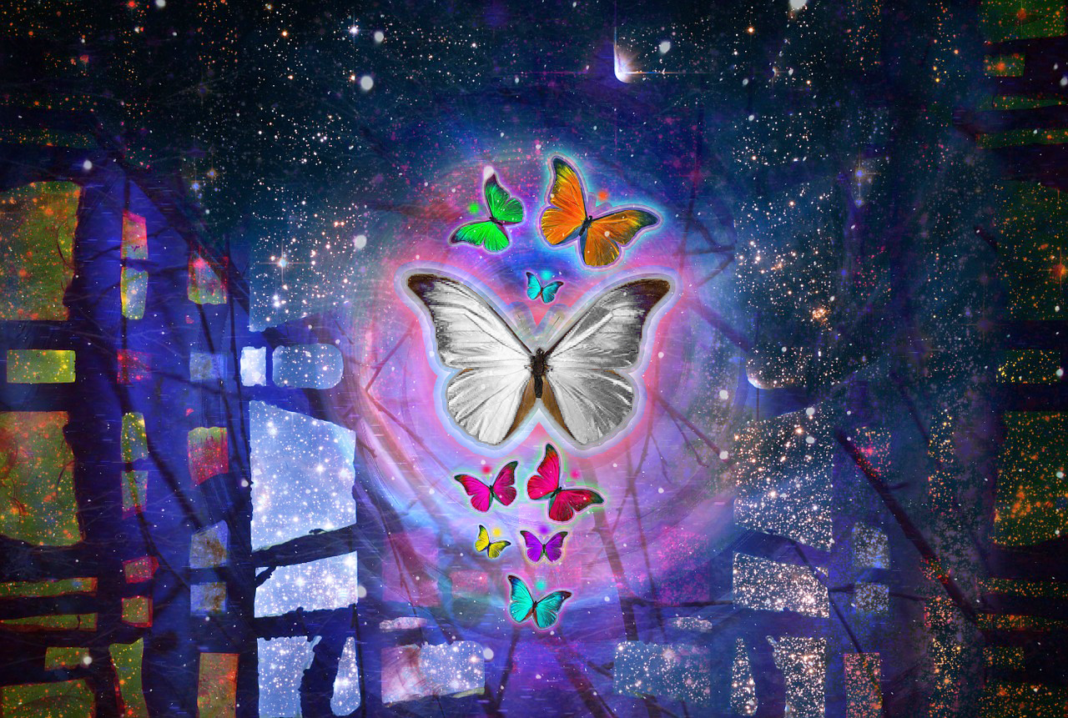 The Spiritual Meaning Of White Butterflies