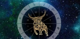 The Laid-Back Taurus Will Give Tons Of Pleasure To The Zodiac Signs