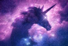 The Unicorn – The Symbolism Behind This Mystical Creature