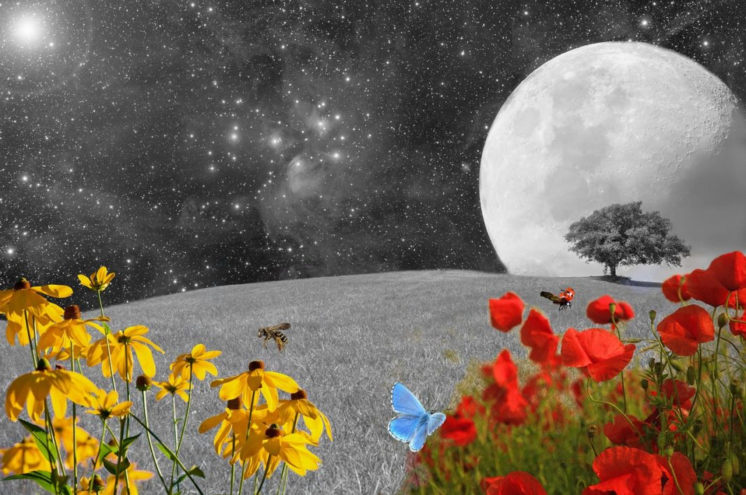 The Impulsive Aries New Moon On April 5th Will Help You Seize The Moment
