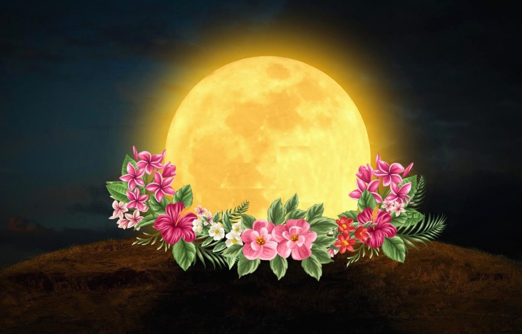 Which 4 Zodiac Signs Will Be Most Affected By Today's Flower SuperMoon?