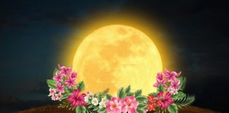 Full Flower Moon On May 18th: Let Go Of Your Fears & Embrace The Change