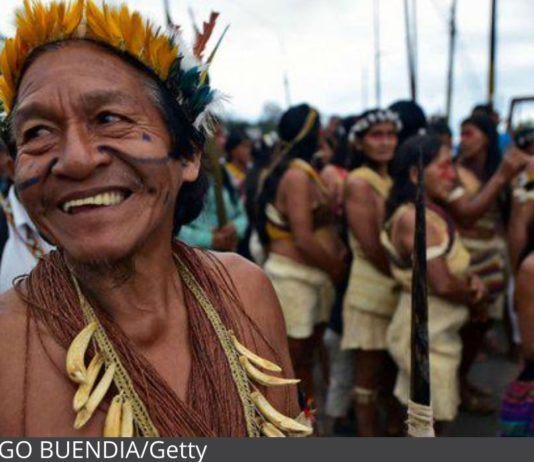 Amazon Tribe Wins Lawsuit Against Oil Company, Protecting Huge Part Of The Rainforest