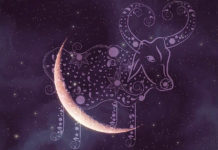 Tonight's New Moon In Taurus Is All About Magic — Prepare For New Beginnings!