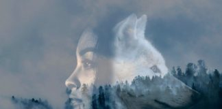 If You Have These 10 Traits, You Are A Mysterious Loner Wolf