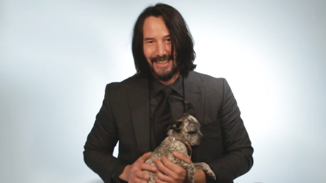 Keanu Reeves Is Playing With Puppies And We Are Obsessed