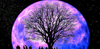 Tonight's Libra New Super Moon Will Finally Get Things Moving