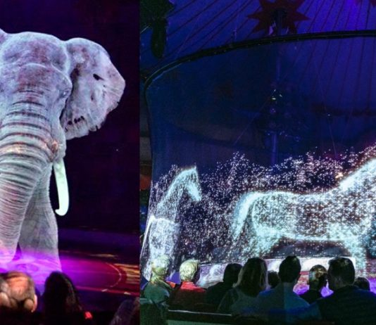 300° Holographic Animals Will Give You The Ultimate Cruelty-Free Circus Experience