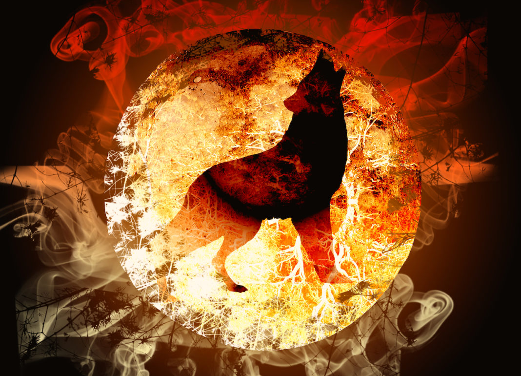 Today's Powerful Wolf Full Moon Eclipse Will Speed Up Your Spiritual Awakening & Help You Release Toxic Energy
