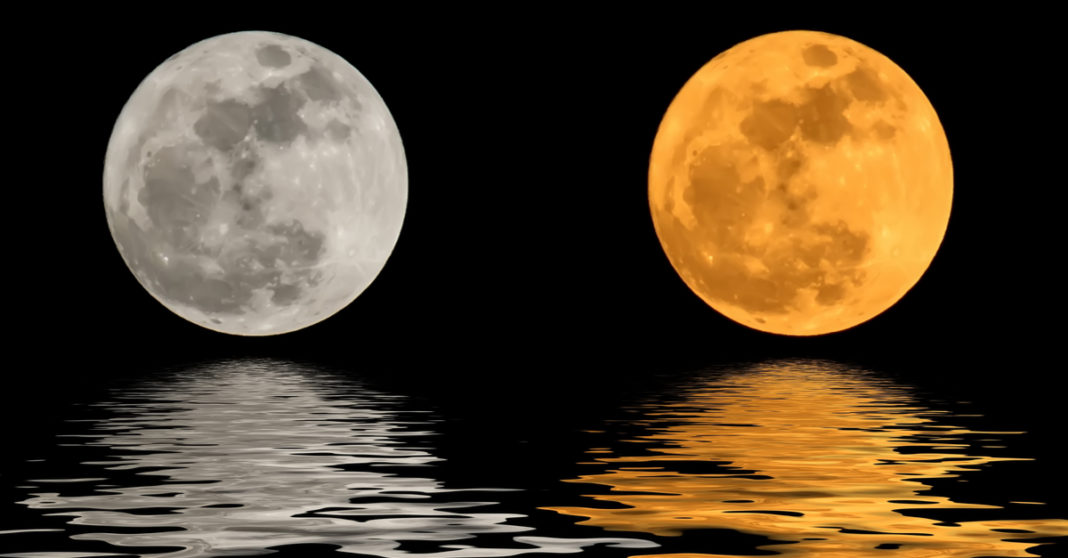 February's Mix Of Fire & Water: Leo Full Moon & Pisces New Moon
