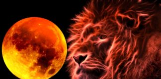 Shine Bright With The Fire Of Leo Full Moon This February 8th/9th