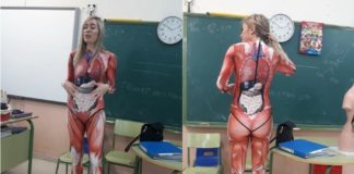 School Teacher Explains Human Anatomy In A Most Original Way