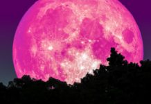 Strawberry Full Moon Is Coming May 5th And It Happens To Be A Lunar Eclipse