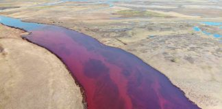 Oil Spill Raises Concerns As It Makes Russia's Arctic Rivers Run Red