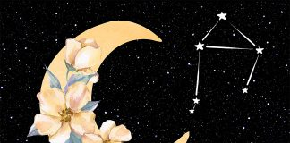 The Spiritual Meaning Of The New Moon And How To Use Its Magical Power